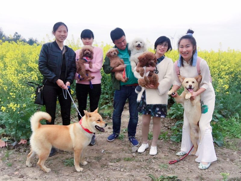 和温岭动保协会一起遛狗去吧!